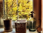 ősz a konyhában