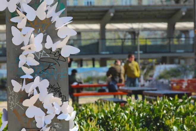 15000 papírlepke Budapest belvárosában 5