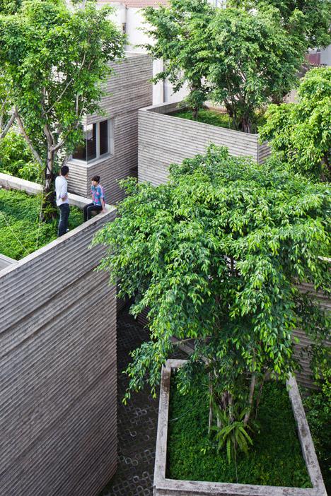 ház fákkal a tetején 2