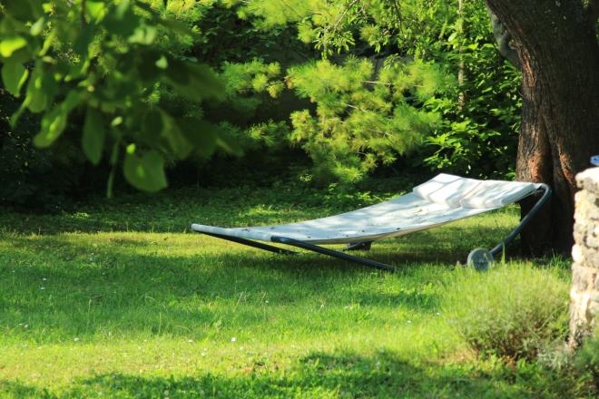 szögletes aranyhal nyári nap a kertben 004 ágy