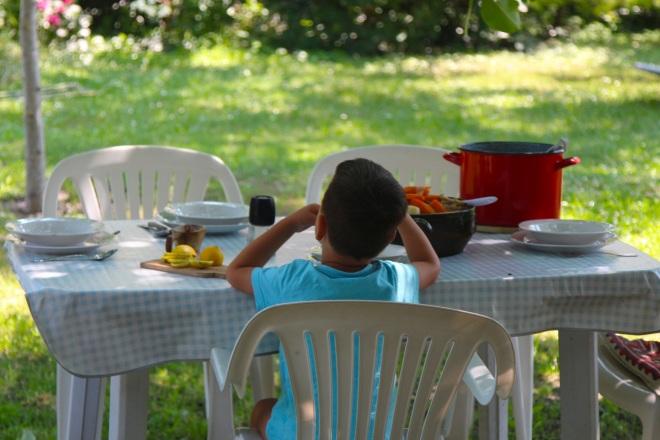 szögletes aranyhal nyári nap a kertben 014 ebéd