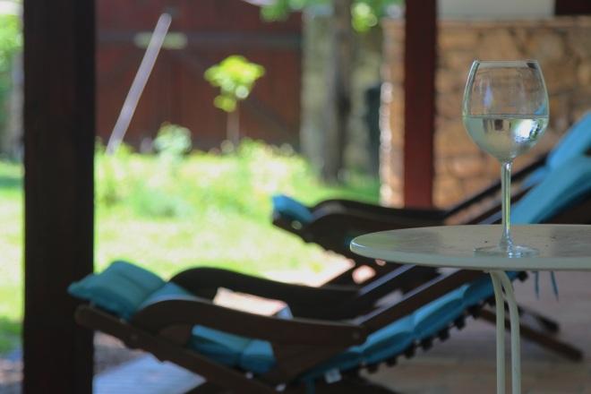 szögletes aranyhal nyári nap a kertben 017 bor