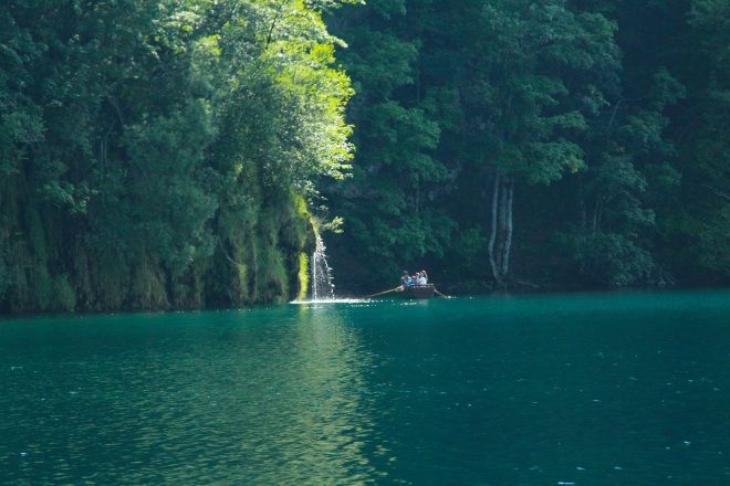szögletes aranyhal Plitvicei tavak 2