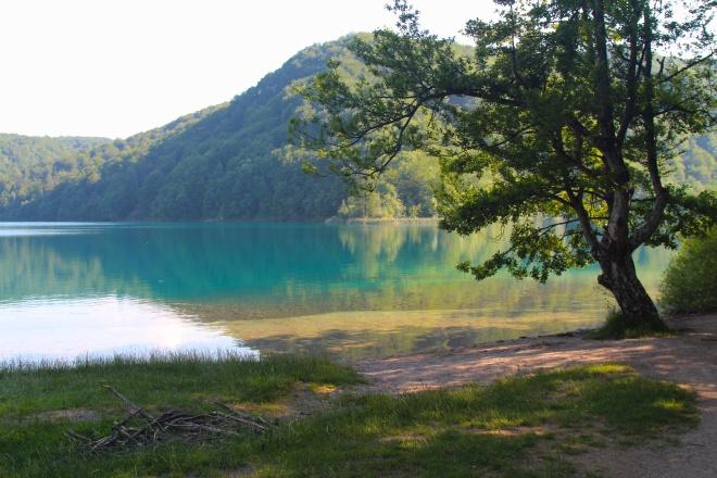 szögletes aranyhal Plitvicei tavak 4