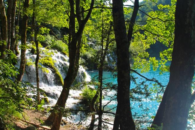 szögletes aranyhal Plitvicei tavak 6