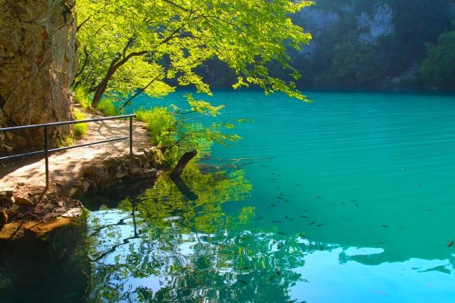 szögletes aranyhal Plitvicei tavak 8
