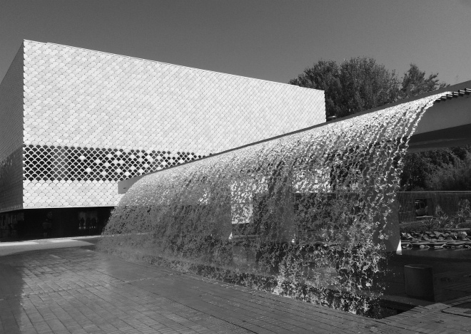 lisszaboni-oceanarium-1-szogletes-aranyhal