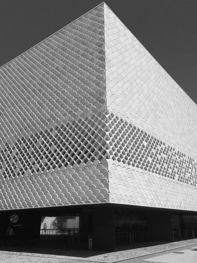 lisszaboni-oceanarium-5-szogletes-aranyhal