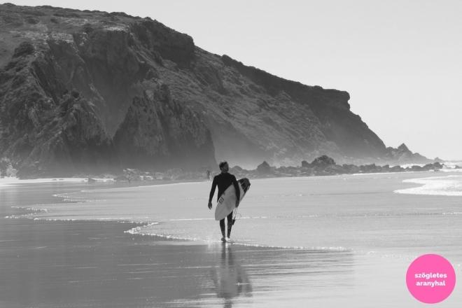 praia-do-amado-portugal-szogletes-aranyhal-1