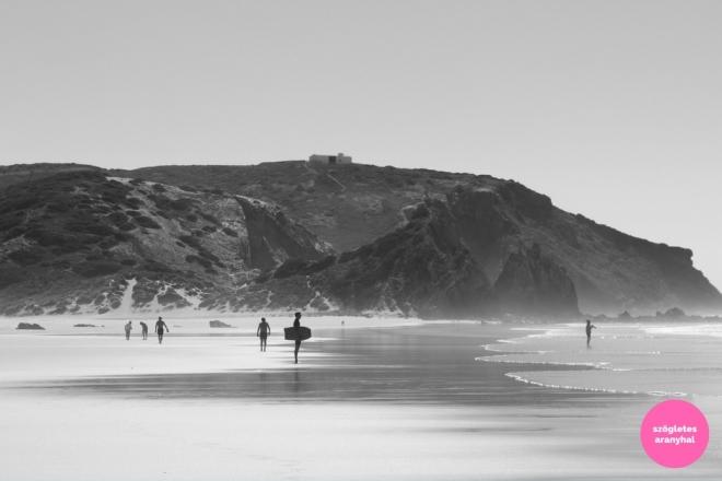 praia-do-amado-portugal-szogletes-aranyhal-2