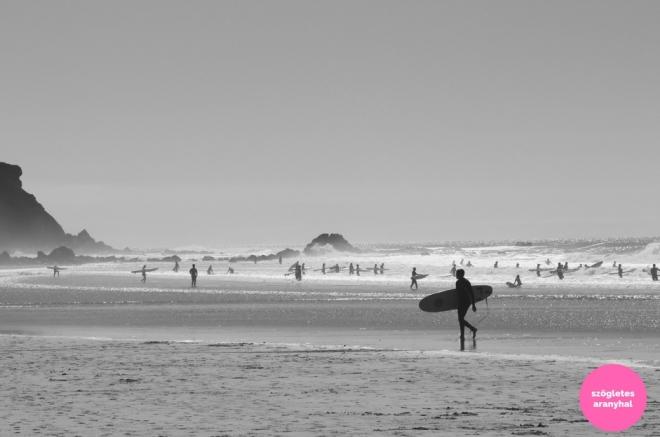 praia-do-amado-portugal-szogletes-aranyhal-3