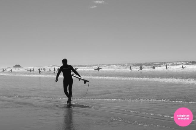 praia-do-amado-portugal-szogletes-aranyhal-6